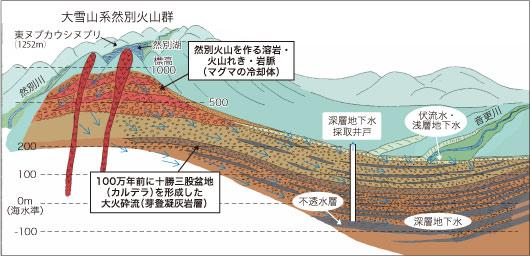 十勝西部構造盆地 模式図